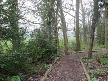 Tronçon de cheminement à proximité de l'aire de jeux, en terre et recouverte de broyat de branches qui renforce l'ambiance « naturelle » du lieu. Il existe, en option, un cheminement ayant une surface plus stable.