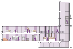 Coupe schématique de la desserte verticale du musée