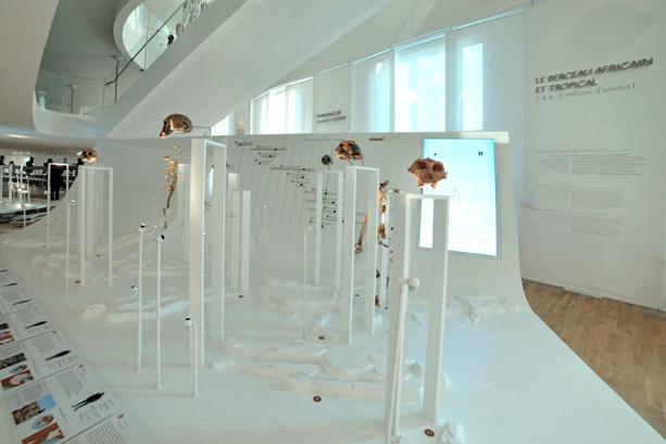 Installation muséographique