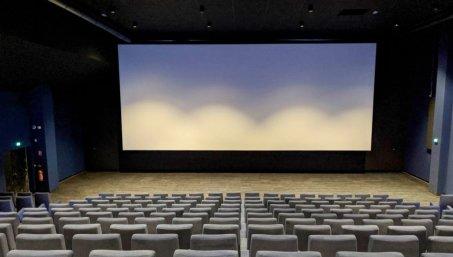 Salle 1 du cinéma. Crédit photographique : La Ferme du Buisson.